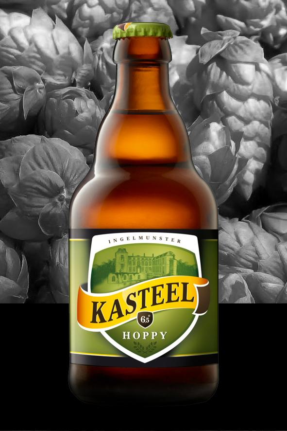Kasteel Hoppy 1
